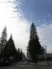 2009_83_314