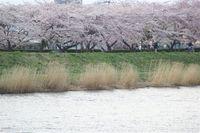 20104_281_2