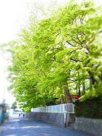20115_038_2_2