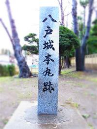 201111_086_2