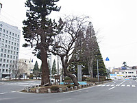 20124_015_2