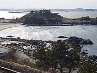 20124