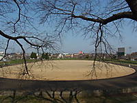 20124_235
