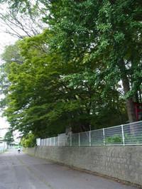 20127_225