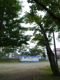 20128_383_2