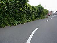 20128_550_2