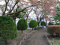 201210_312