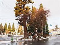 20131_061