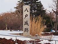 20132_344