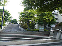 201366_195